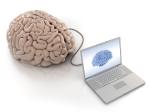 Brain Training Brain Fitness